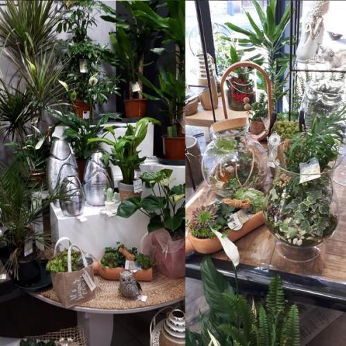 espace de vente au sein de la boutique de fleurs