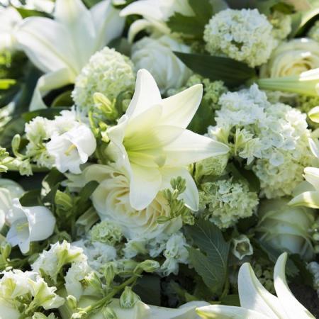 Bienvenue sur le site de votre fleuriste près d'Abbeville